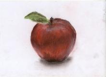 Warsztaty artystyczne: Anonim Jabłko, suchy pastel