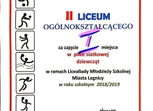 Licealiada Miasta Legnica - chłopcy